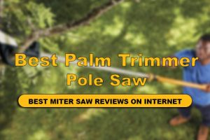 Best Pole Saw For Trimming Palm Trees