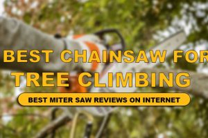 best chainsaw for tree climbing