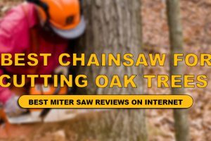 Best Chainsaw for Oak Trees